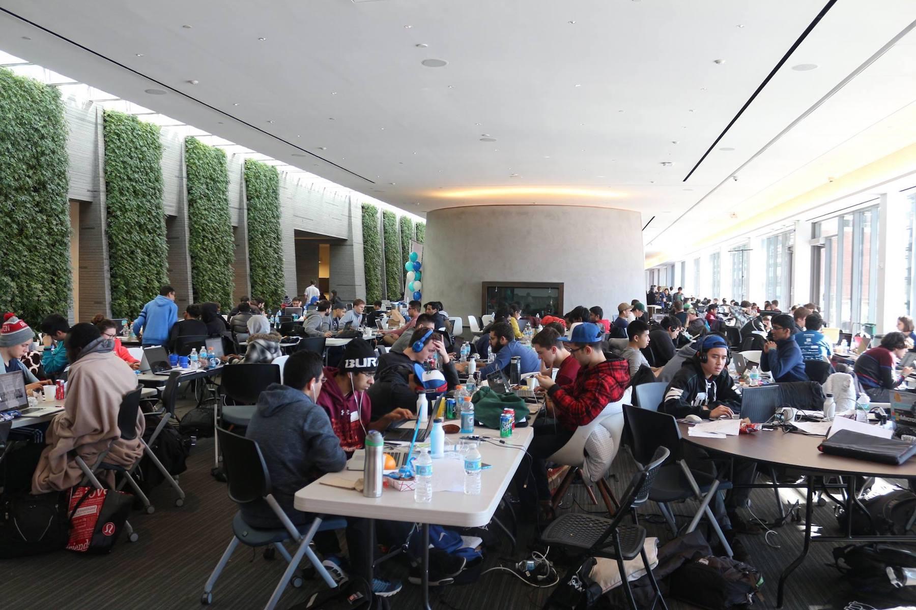 Hoya Hacks in HFSC